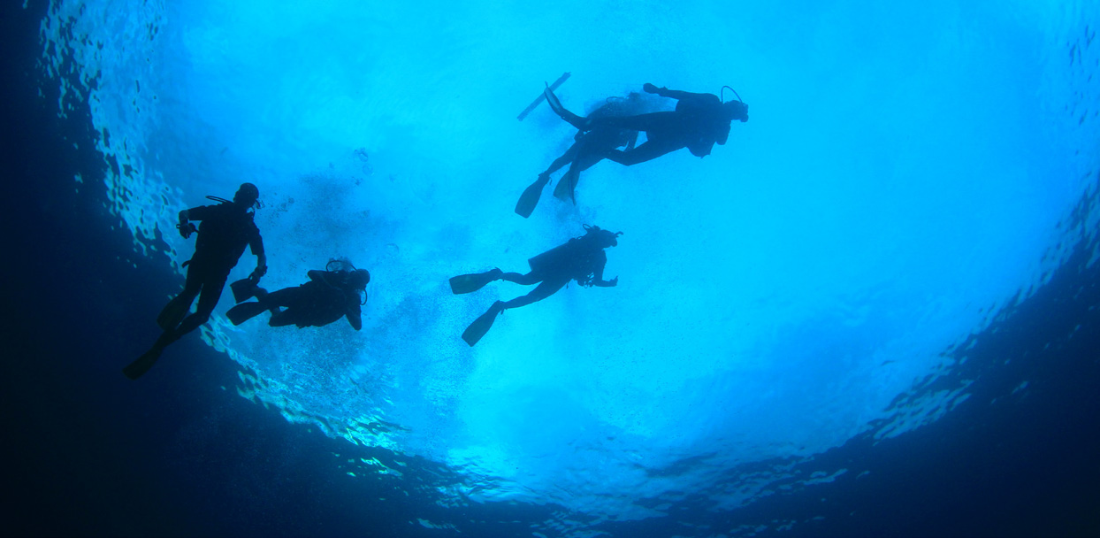 DIVING EXPERIENCES